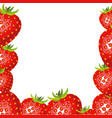 colorful background of realistic strawberry fruits vector image