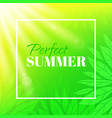 perfect summer banner with typographic design vector image