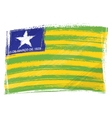 Grunge Piaui flag vector image