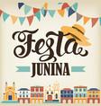 Festa junina hat vector image