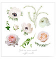 elements flower collection of pink white garden vector image