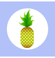 pineapple in circle vector image