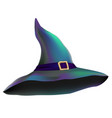 witchs mystic hat vector image