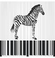 zebra barcode vector image vector image