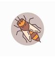 Honey bee flat icon vector image