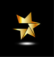 Golden star logo with six sides vector image