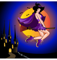 Halloween Witch Background vector image vector image