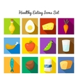 Healthy food icons set vector image
