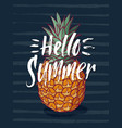 background with tropical pineapple vector image