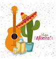 viva mexico colorful poster with guitar tequila vector image