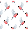 Watercolor bullfinch bird pattern vector image