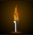 burning torch with fire flame vector image vector image