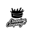 Hand written lettering Cleaning Company logo label vector image