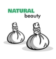 Isolated Spa Objects vector image