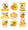 orange products emblems set vector image