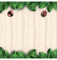 Ladybugs and green leaves on wooden background vector image