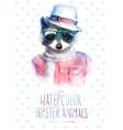 raccoon portrait in vector image