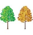 seasonal tree vector image