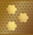 honeycomb pattern with frames vector image
