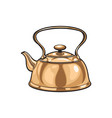 metal bronze kettle teapot sketch isolated vector image