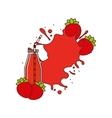 smothie fruit design vector image