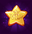cartoon vip gold star vector image