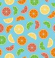 Colorful citrus seamless pattern vector image