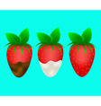 ripe strawberry vector image vector image