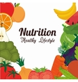 Food and nutrition vector image