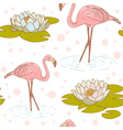 Flamingo seamless vector image