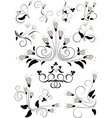 Variants flourishes decorative details vector image