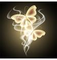 Glowing butterflies vector image