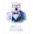 bear portrait in sunglasses vector image