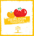 fresh home grown heirloom tomatoes creative vector image