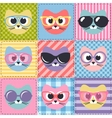 patchwork background with cats and sunglasses vector image