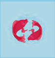 two koi carps splashing in water and swim vector image