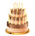 Chocolate cake with candles3 vector image vector image
