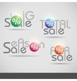 Colorful Set Of Sale Icons vector image