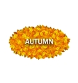 Oval Frame from Autumn Orange Leaves vector image vector image