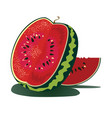 Juicy watermelon vector image