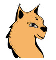 lynx cute funny cartoon head vector image