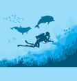 underwater wildlife diver dolphins vector image