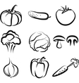 with a set of vegetables vector image