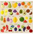Fruits and berries icon set vector image