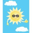 sun in sunglasses vector image