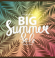 big summer sale abstract background vector image