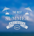Summer holidays background vector image