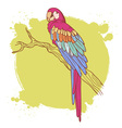 Parrot card vector image vector image