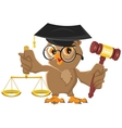 Owl Judge holding gavel and scales vector image