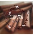 Herbs and Spices Collection - Cinnamon vector image vector image